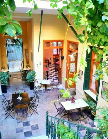 Chez Violette 2