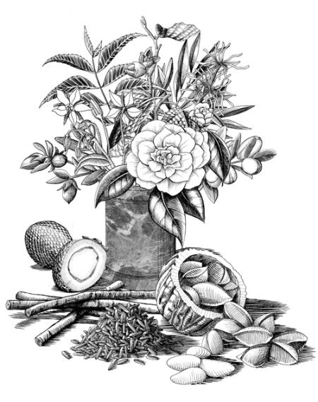 buly-fleurs-et-fruits