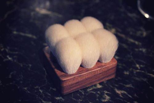 Japanese Brushes - PhotoBuly 1803
